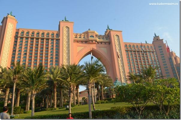 Dubai Emirates (105)