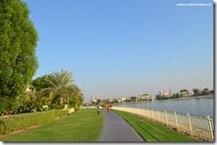 Dubai Emirates (182)