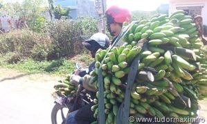 Dalat_Vietnam (118)