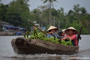Delta_Mekong_Vietnam (137)