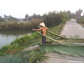 Hoi_An_Vietnam (29)