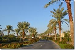 Dubai Emirates (184)
