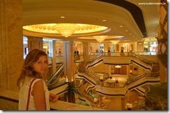 Dubai Emirates (410)